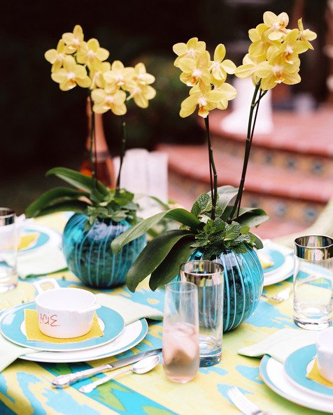 Orchid+Orchids+atop+table+set+summer+outdoor+xE_av27QfeZl